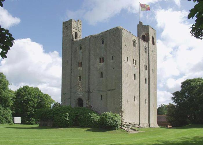 Castle Hedingham Pest Control Service
